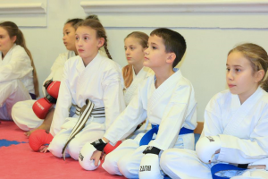 kids karate compressed 300x200 - Karate at YMCA Hawker in Kingston