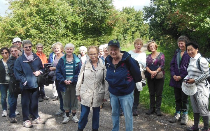 walk 1 2015 scaled 720x450 - Social Activities