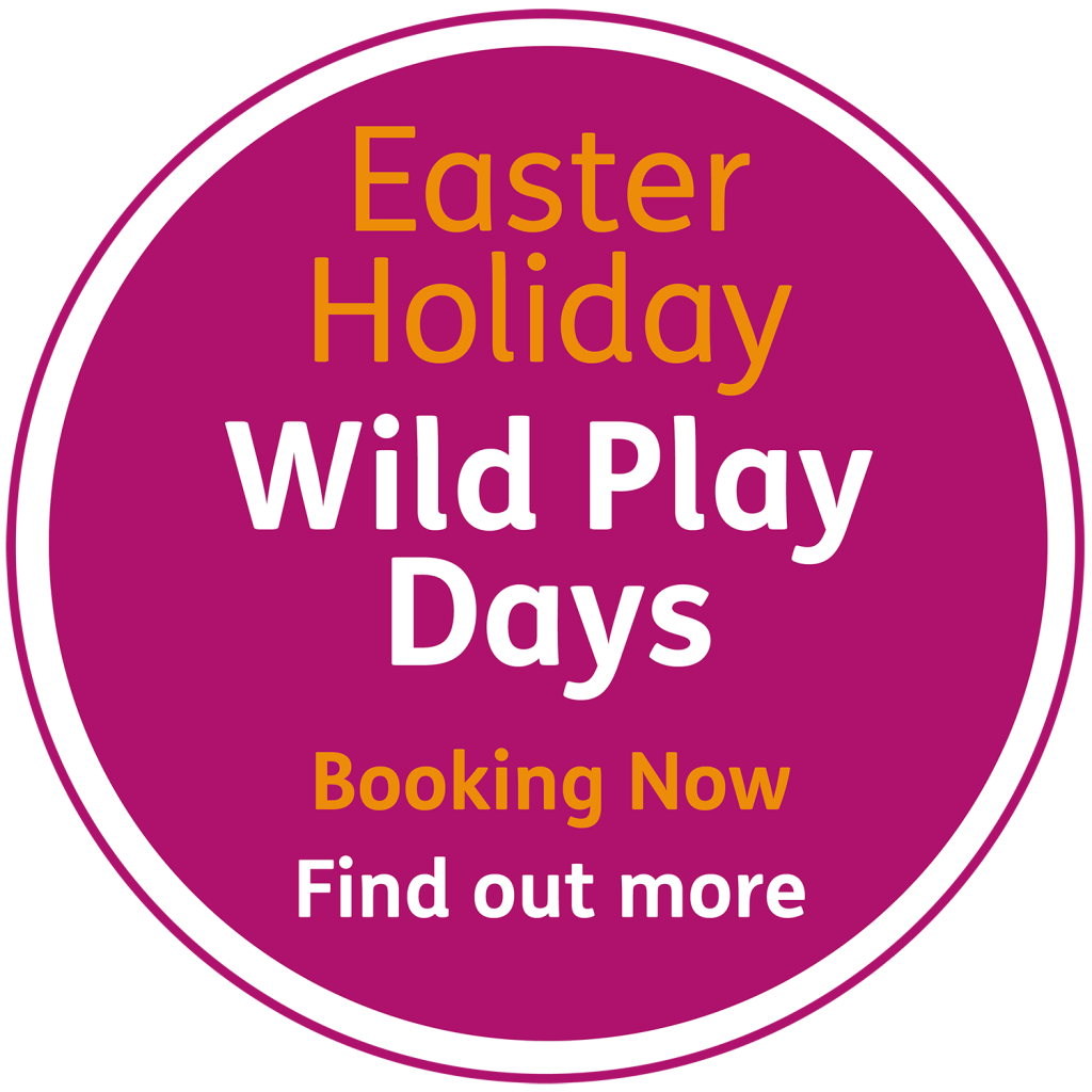 WPD Easter Holidays Badge 1 1024x1024 - Children's Classes & Courses at YMCA Hawker