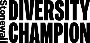 stonewall diversity champion black 2021 300x144 - YMCA Jobs and Opportunities